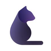 P.Cat-全能抓图猫